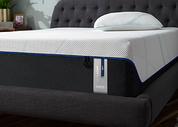 Tempur-LuxeAdapt Soft in Styled Room